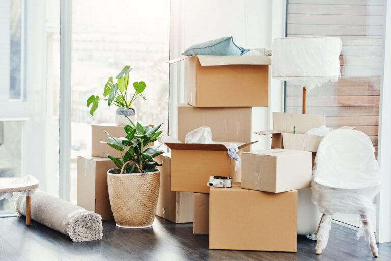 packed boxes during summer move
